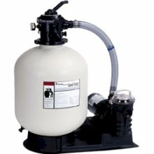 Pentair 1.4 square foot Sand Dollar Sand Filter (1 HP)